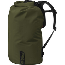 SealLine Boundary Pack L, olive